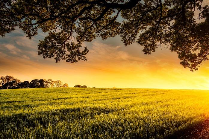 sunset-2420745_1280